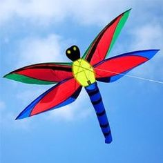 Awesome #butterfly #kite