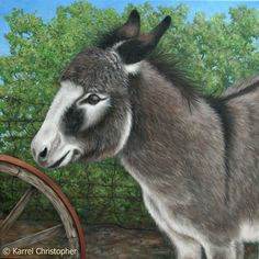 Karrel Christopher paintings of wild animals farm animals pets plants on canvas panel and REMO non-leather drums as totem drum spirit animal drum shaman drum Donkey Drawing, Farm Animals, Cute Animals, The Donkey, Animal Rights, Livestock, Spirit Animal, Pet Portraits, Oil On Canvas
