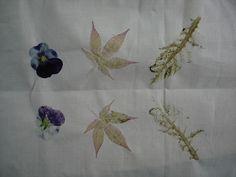 Eco-dyeing leaf beating workshop http://fionalongart.co.uk/archives/hapa-zome-eco-dyeing-workshop