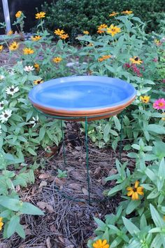 I needed a small bird bath that would withstand the Florida sun and heat. Not easy to find. So, whats a gardener to do? Make one! [media_id:2878939] Items you n…