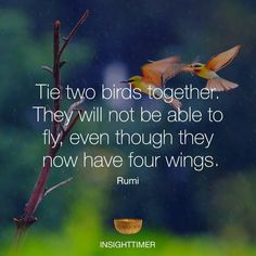 The two birds together. They will not be able to fly, even though they now have four wings. Rumi