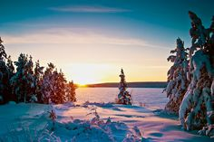 Frozen Northern Saskatchewan lake and snow covered forest during a cold winter sunset.