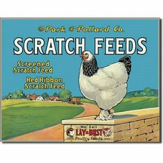 Scratch Feeds Sign - Chicken Signs: Presents for Chicken Lovers