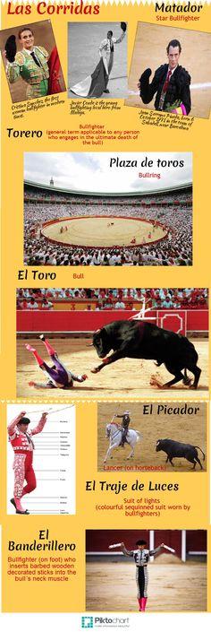 Ana se entera de las corridas de toros son realmente populares en España.