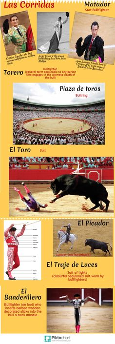 Corrida/Bullfight | @Piktochart Infographic  Information from: http://www.andalucia.com/