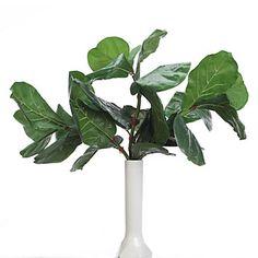 Fiddle Leaf Spray - Set of 3 | Stemmed Floral | Botanicals & Plants | Home Accents | Decor | Z Gallerie