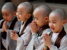 Por Dentro... em Rosa: 10 Frases budistas que podem mudar sua visão da Vi...