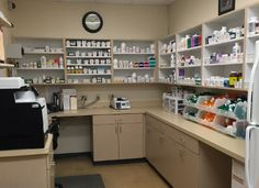 Veterinary Diagnostics & an In-House Lab Are Available at The Veterinary Specialty Center of Delaware