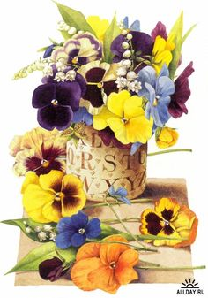 Beautiful pansies with their little faces! This is by Marjolein Bastin