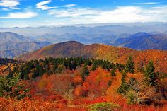 Fall View in the Great Smoky Mountains National Park.  Photo by: https://www.flickr.com/photos/donahos/