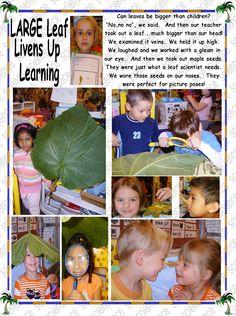 Leaf Science   JUMBO Style Letter F, Fall Is Here, Autumn Leaves, Harvest, Kindergarten, Teacher, Science, Learning, Children
