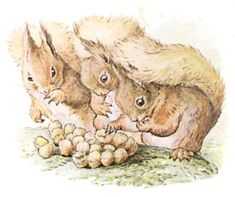 Photo Credit: From the 1903 THE TALE OF SQUIRREL NUTKIN BY BEATRIX POTTER on Zorger, Public Domain
