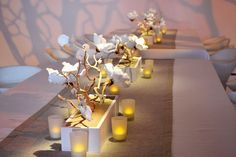 Modern Wedding Floral Centerpieces | Toledo Wedding Planner | Perrysburg Wedding Planner | Your Perfect Day's Wedding Chat