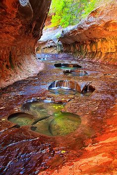 Subway, Zion National Park, Utah, USA.