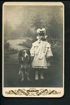 CC Canine Border Collie Type Dog Sweet Little Girl 1890s Cabinet Card Photo | eBay