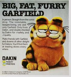 Garfield!One of the only toys I have kept!