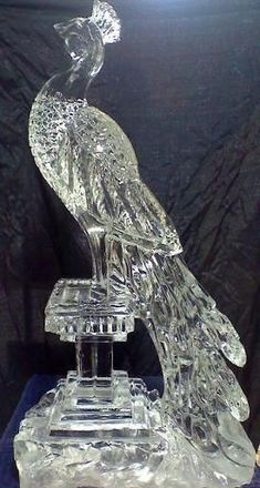 Peacock Ice Sculpture Centerpiece | Wedding Peacock ice sculpture themarriedapp.com hearted
