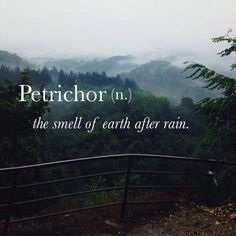 Petrichor- the smell of earth after rain.