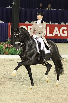 Moorlands Totilas (Toto) and Edward Gal. The epitome of perfect dressage.