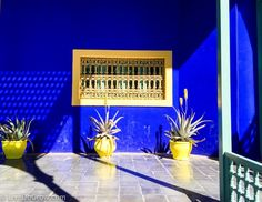 Visit Majorelle gardens in Marrakech | LiveDoGrow