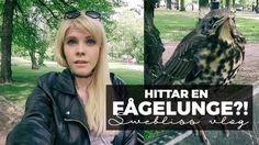 Hej! Välkommen till min kanal! (English subtitles soon!! )  JAG LÄGGER UPP 1-2 VIDEOS I VECKAN! :)  Twitch Stream: http://ift.tt/PHmgxh    INNEHÅLL   Visar min outfit! Jacka från guess i newyork. Top från Vans converse ellos smycken m.m.  Påväg till promotion lunch Med Therese Lindgren och estelle & Thild  Therese är här. jag är hungrig och hon är superkissnödig.  Umgås på eventet  Pratar om lunchen och den goda eftterrätten!  Nu ska jag till kontoret!  Hittar en ensam fågelunge! tror den…