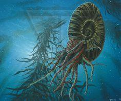Paleo-Art: Marine Life Collection by Todd S. Marshall, via Behance