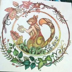 Floresta Encantada/Esquilo/Johanna Basford