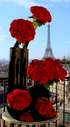 Roses from famous florist jeff Leatham<3 the effiel tower in the background