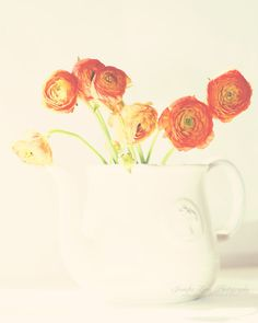 orange ranunculus white teapot