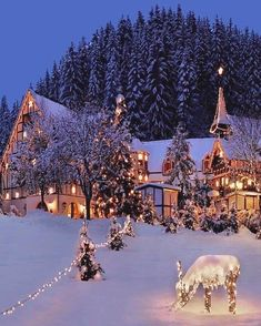 Christmas is coming – Winterbilder Christmas Mood, Christmas Is Coming, Christmas 2019, Christmas Lights, Christmas Decorations, Merry Christmas, Winter Christmas Scenes, Hygge Christmas, Beautiful Christmas Scenes
