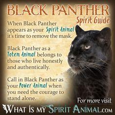 Black Panther Spirit Totem Power Animal Symbolism Meaning 1200x1200