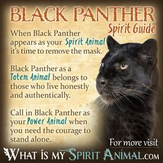 Black Panther Spirit Totem Power Animal Symbolism Meaning 1200x1200