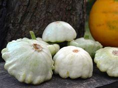 A patisszon termesztése – Útmutató - CityGreen. No Cook Meals, Pesto, Onion, Garlic, Nutrition, Vegetables, Recipes, Pumpkins, Gourd