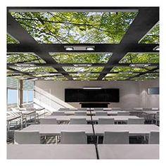 SALLE DE FORMATION - dalle ilot faux plafond acoustique personnalisee