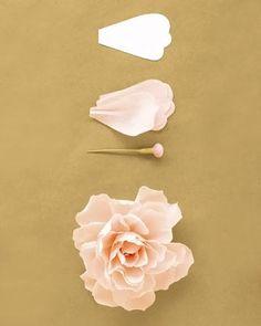 Artesanato é solução para enfeitar sua casa. Essas flores de papel decoram a parede com muita graça. Aprenda e use.