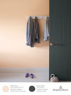 Color Trends 2014/Benjamin Moore - (The Door, not the walls, Flint AF-560)