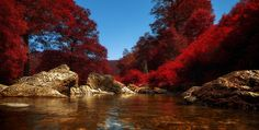 Photo river of dreams by Rudi Moerkl on 500px