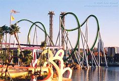 I'll go on any rollercoaster in the world!!! i love rollercoasters!!!