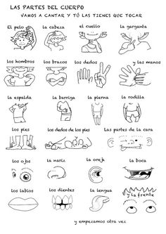 Spanish Body Parts Worksheet. 30 Spanish Body Parts Worksheet. Free Spanish Worksheet Parts Of the Body El Cuerpo Spanish Songs, Spanish Grammar, Spanish Vocabulary, Spanish English, Spanish Language Learning, Spanish Teacher, How To Speak Spanish, Teaching Spanish, Learn Spanish