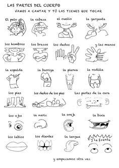 lalalingo: LAS PARTES DEL CUERPO. Parts of the body