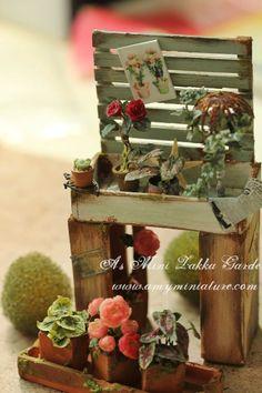 zakka garden- amyminiature