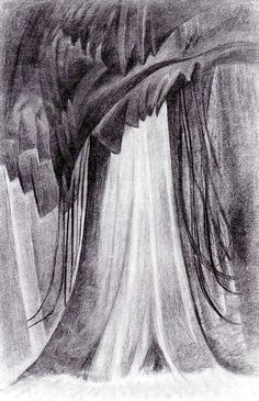 Emily Carr, Untitled (Formalized Cedar), c. 1931, Charcoal on paper, 91.8 x 61.2 cm, Vancouver Art Gallery.