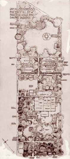 "Edna walling Plan of Proposed Design for Garden for Doctor Farrow, ""Oak Hill"", Ferntree Gully"