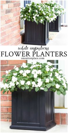 Easy, summer flower planter ideas with impatiens that pack a big punch and add charming curb appeal to your home. Low maintenance and continuous blooms. You are in the right place about front yard cur Rustic Landscaping, Florida Landscaping, Front Yard Landscaping, Landscaping Ideas, Landscaping Plants, Hillside Landscaping, Patio Plants, Front Door Planters, Garden Planters