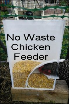 Keep Your Backyard and Your Chicken Coop Clean With This DIY Mess-Free Bucket Chicken Feeder #ChickenCoop