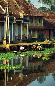 Kerala en Inde, une région à découvrir avec Inde en liberté
