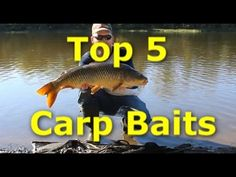 Five best carp baits. How to catch carp with 5 different baits. Here are my five favorite carp baits. Feed corn, Sweet Corn, Boilies, Bread, and Chick peas. Carp Fishing Bait, Kayak Fishing, Marlin Fishing, Spear Fishing, Fishing Chair, Fishing Box, Fishing Gifts, Going Fishing, Best Fishing