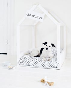 Taking care of your pet goes beyond giving them food and clean water; you can also do a pawsome bed upgrade! Get inspired by the DIY Pet Bed Collection. Diy Pet, Diy Dog Bed, Cute Dog Beds, Animal Projects, Diy Projects, Fall Projects, Furniture Projects, Diy Pour Chien, Dog Milk