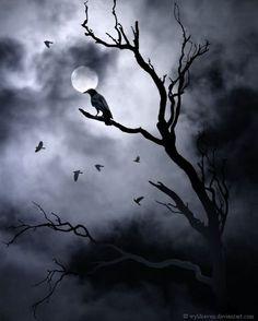 Quoth the raven. Fantasy Kunst, Dark Fantasy Art, Dark Art, Crow Art, Raven Art, Dark Gothic, Gothic Art, Beautiful Moon, Beautiful Places