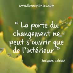 Citation de Jacques Salomé #citation #pensée #citationdujour